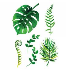 """Сет временных тату """"Зеленые листья"""""""