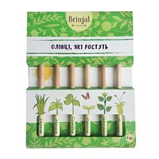 Набор цветных карандашей Eco Stick, 6 шт.