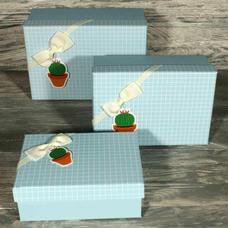 """Подарочная коробка """"Cactus"""" (от 17 см)"""