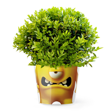 "Кашпо MyFacepot ""Plant Monster (yellow)"""