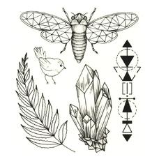"""Сет временных татуировок """"Цикада"""""""
