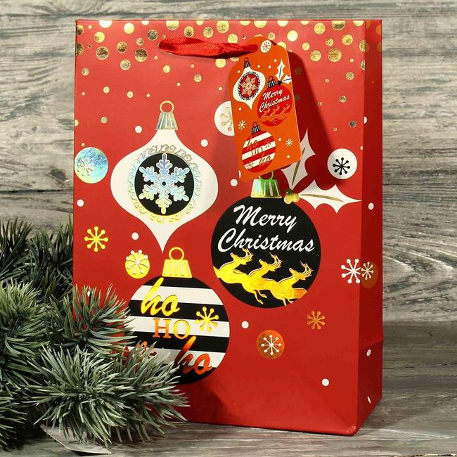 """Подарочный пакет """"Merry Christmas"""" 23x18x10 см купить в ..."""