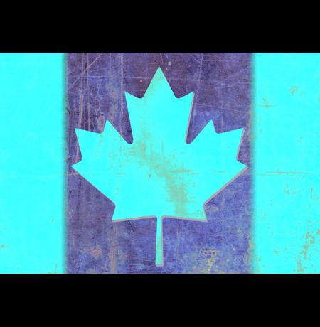 """Обложка на паспорт """"Канада"""""""